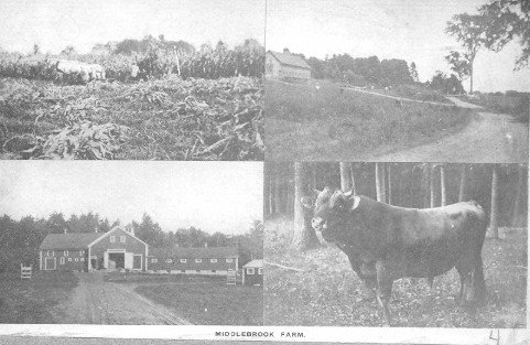 Middlebrook Farm.jpg