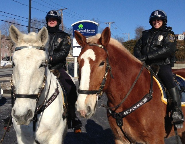 Mounted Patrol - Motorist.jpg